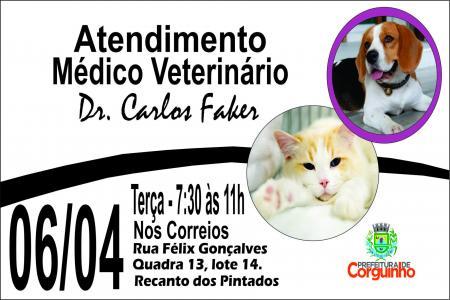 Atendimento médico veterinário