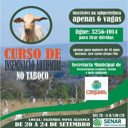 Curso de inseminação no Taboco
